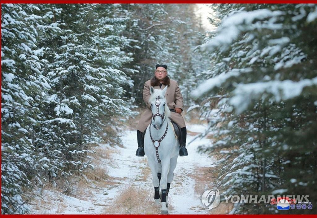 Ким - конь.jpg